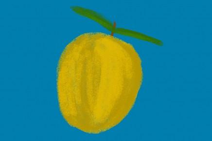 Solo limoni > Giacomo Verde (2001)