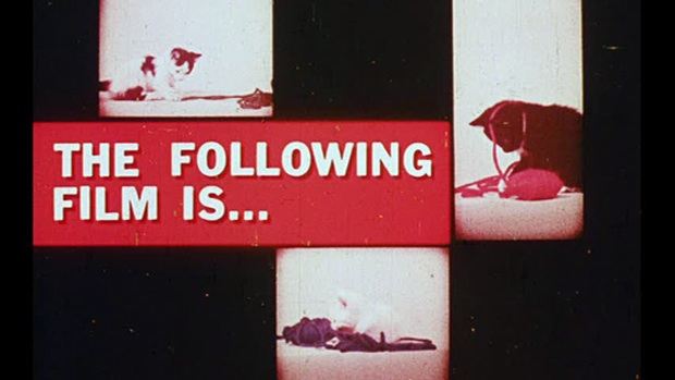 The Following01