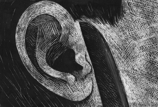 Dell'ammazzare il maiale - Simone Massi