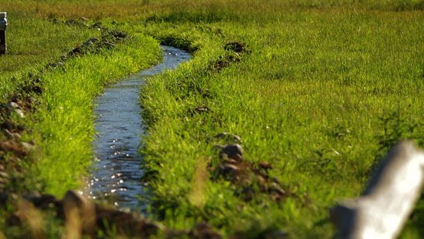 Watershed01