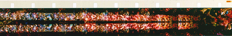 Chartres Series (1994) • Fred Camper, Frame Enlargements from Films by Stan Brakhage • www.tinyurl.com/yelgnrg