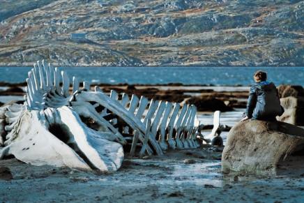 Leviathan > Andrej Zvjagincev