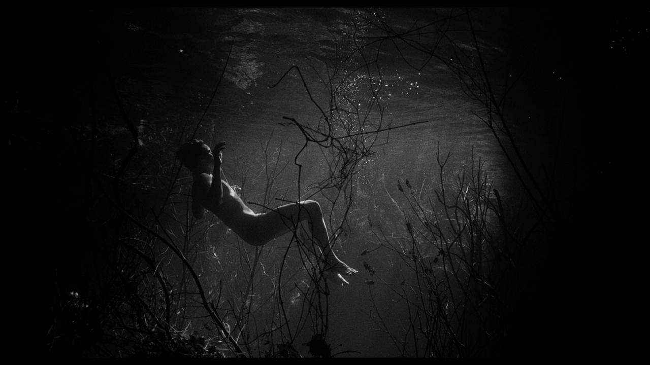 swimmer_05