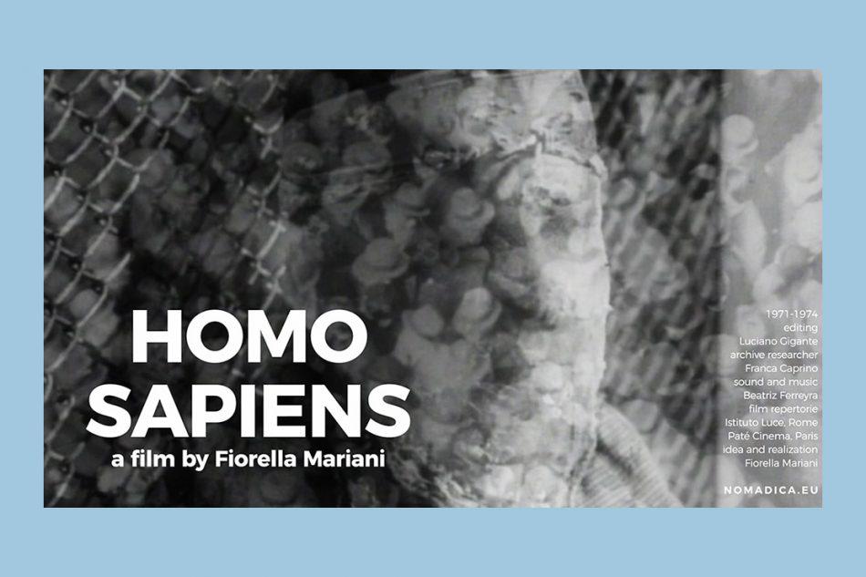Homo sapiens by Fiorella Mariani (1971-1974)
