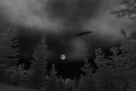 """The Night Journey"" by Bill Viola"