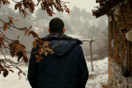 """L'eterno ritorno. """"L'albero dei frutti selvatici"""" di Nuri Bilge Ceylan"""